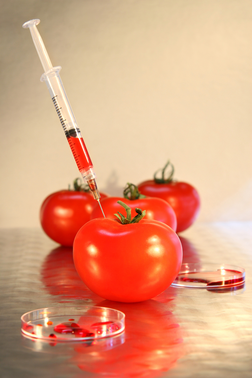 alergia pokarmowa pomidory