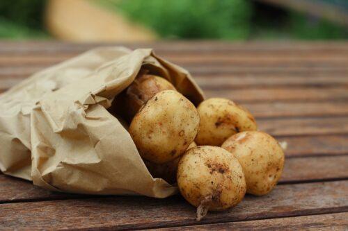 Alergia na ziemniaki – przyczyny i objawy