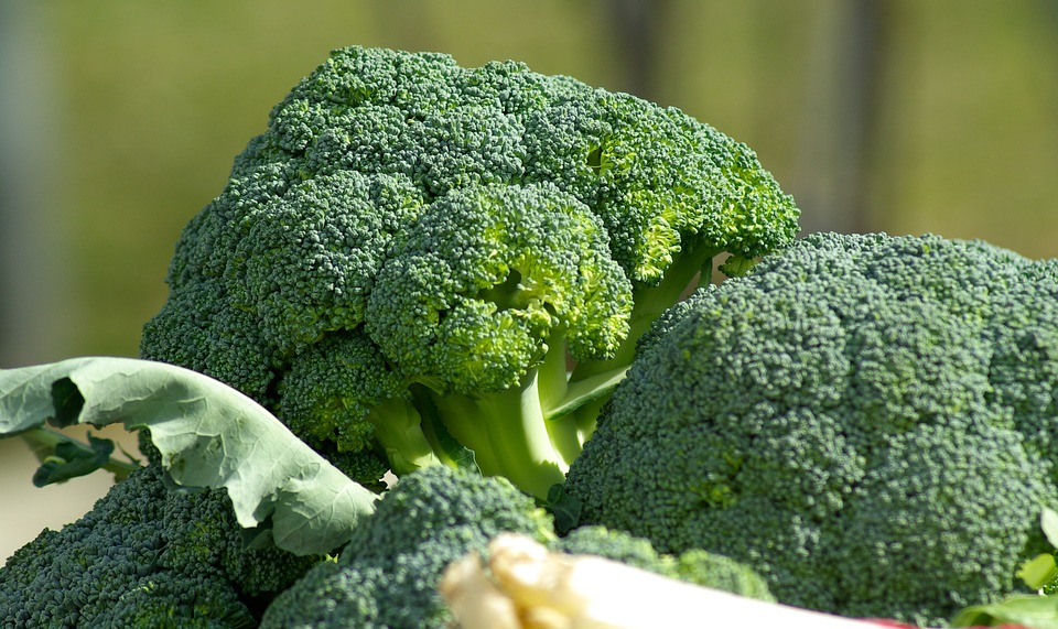 alergia na brokuły